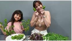 """Team Kramer, pinasilip ang kanilang """"ani"""" mula sa kanilang organic garden"""