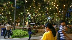 Manila's 1,600-hectare green space project wows netizens