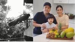"Toni Gonzaga, ipinost ang ""first movie"" nina Paul Soriano at Seve; Netizens, humanga"