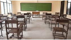 50% ng mga public schools sa NCR, gagamiting quarantine facility