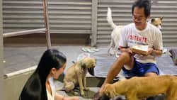 Homeless man goes viral for his selfless love for stray dogs