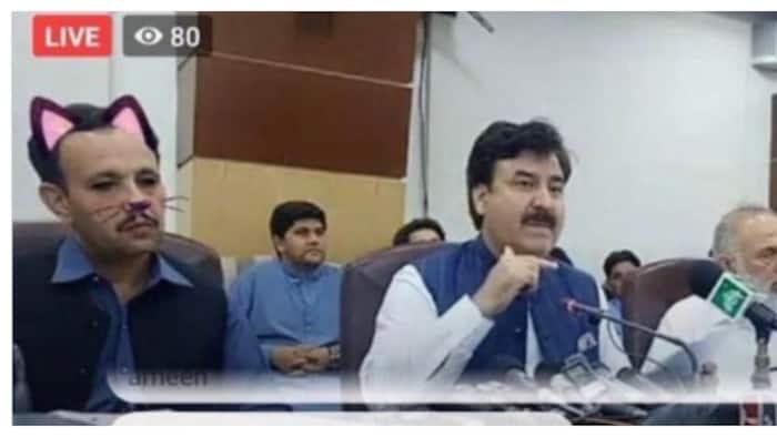 Live streaming kasama ang Pakistan minister, kinatuwaan dahil sa 'cat filter'