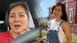 Alice Dixson answers netizen asking her to stop traveling amid the pandemic