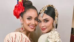 Megan Young and Pia Wurtzbach grace the 30th Southeast Asian (SEA) Games opening ceremony