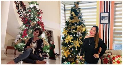 Pabonggahan! Deck the halls with inspiration with these celebrity Christmas trees