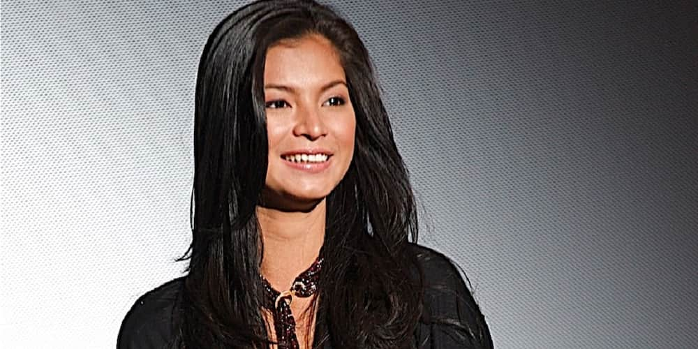 Angel Locsin, mamimigay ng P1 million cash aid dahil sa Typhoon Rolly