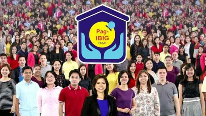 How to check Pag IBIG contribution: online verification and ID requirements