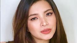 Angel Locsin praises Baguio City Mayor Magalong amid Tim Yap's party controversy