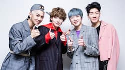 Everything you need to know about Winner members