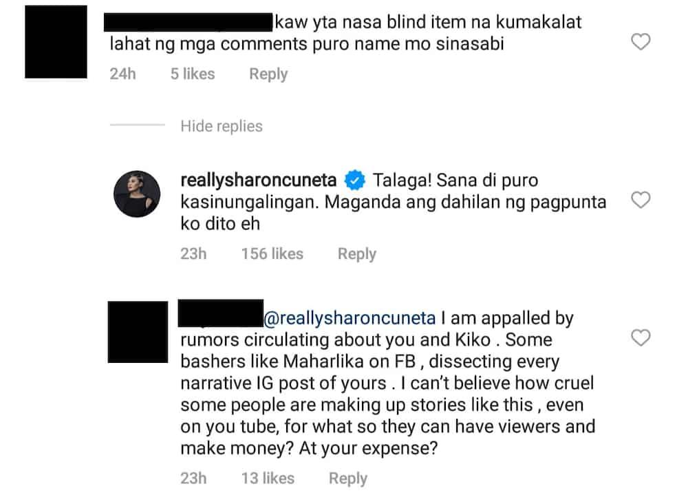 """Sharon Cuneta, nairita sa mga vloggers na pinagkakakitaan ang posts niya: """"Puro kasinungalingan"""""""