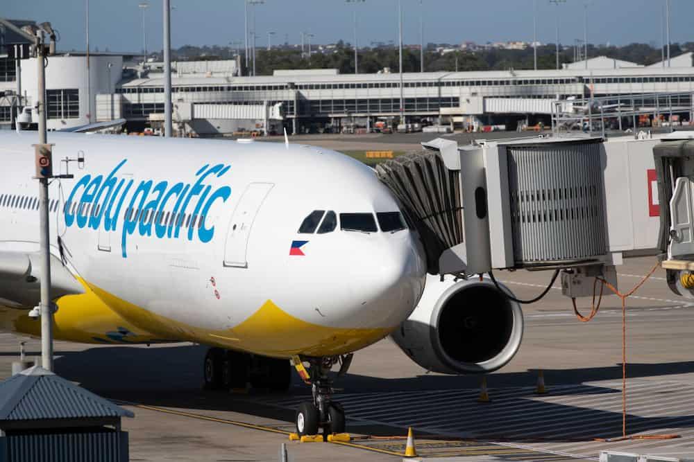'Diskarte hindi arte': Cebu Pac flight attendant slams those who belittle online sellers