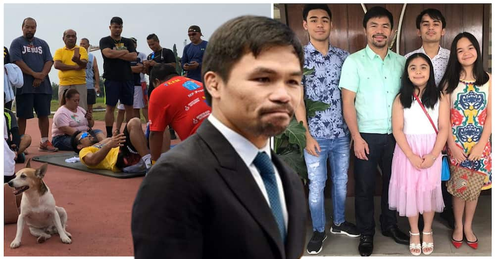 """Asong naging """"training partner"""" ni Sen. Manny Pacquiao, nasagasaan sa Gen San"""