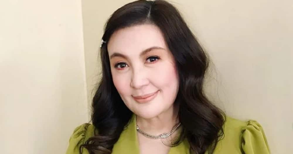 Video of Sharon Cuneta's huge, luxurious house's construction goes viral
