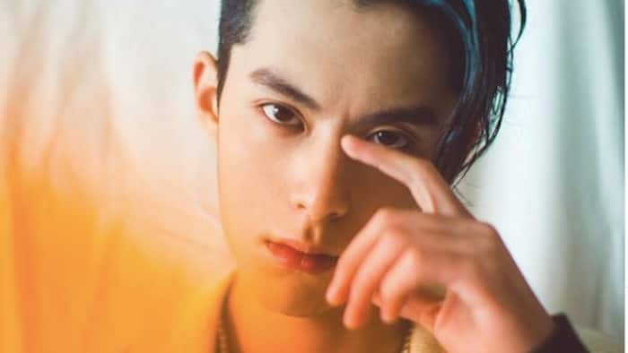 Dylan Wang age, height, girlfriend, and movies