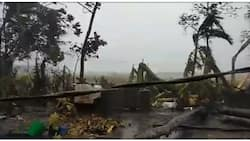 Hagupit ni super typhoon Rolly, hagip sa ilang video na ibinahagi ng mga netizens