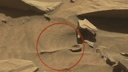 This was found on Mars - And the whole world is shocked! (PHOTOS)