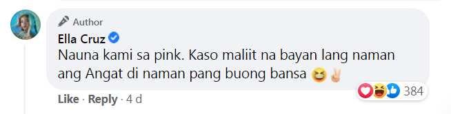 Ella Cruz, nilinaw na walang kinalaman kay VP Leni Robredo ang campaign color ng ama