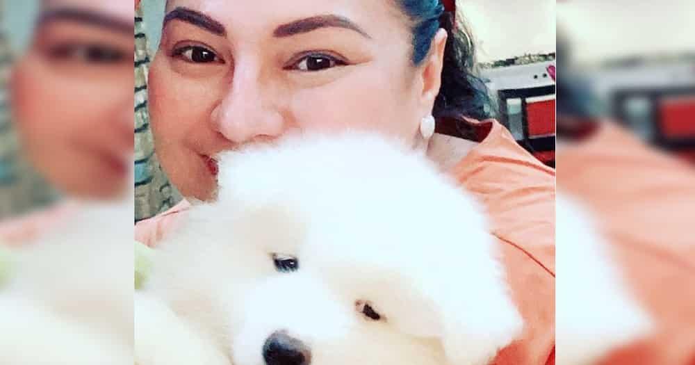 "Karla Estrada talks about the financial status of Daniel Padilla, ""At 35, he's good"""