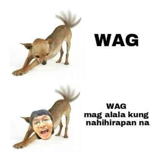 Unique Salonga memes