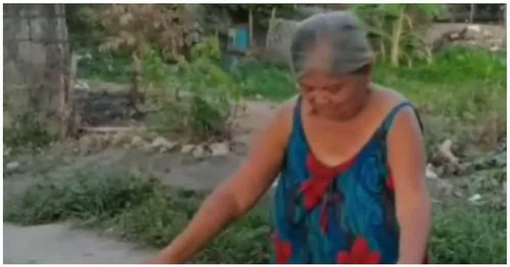"""Mother's day balloon surprise sa isang ina, pareho ng sinapit sa kantang """"Ako ay may lobo"""""""