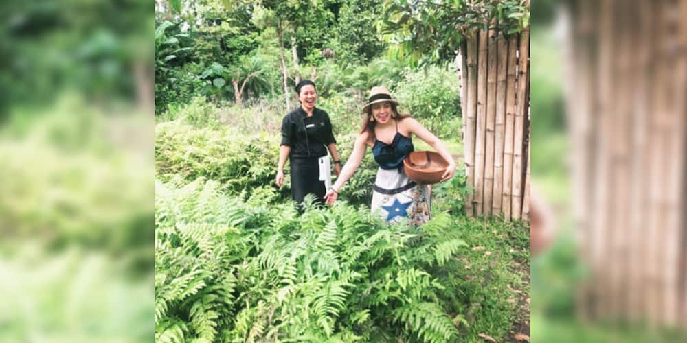 KC Concepcion learns harvesting vegetables amid the pandemic