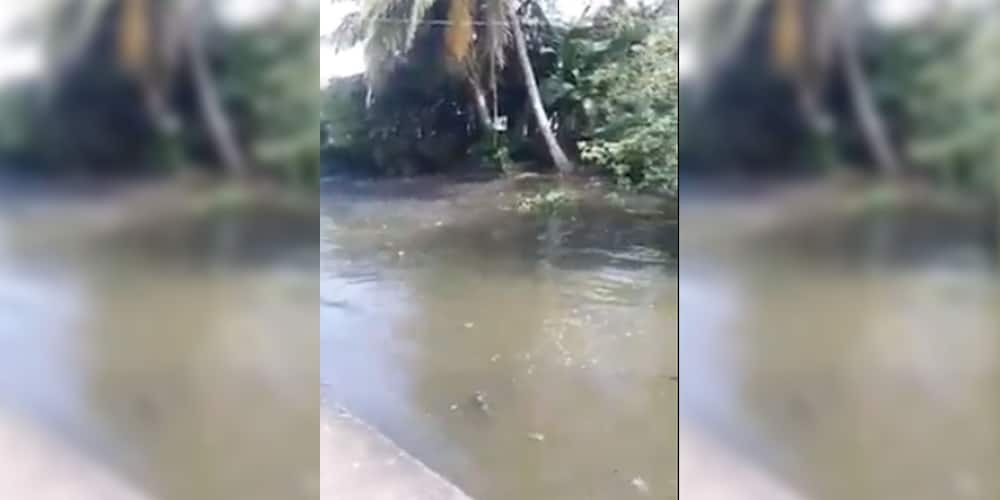 Video of river waters moving as earthquake hits Masbate goes viral