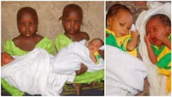 Identical twin girls cradle their newborn twin brothers (photos)
